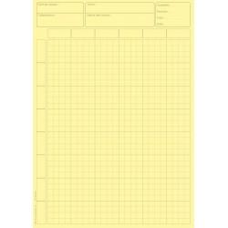 Feuilles de travail 6 colonnes carreaux, bloc audit de 100 Feuilles