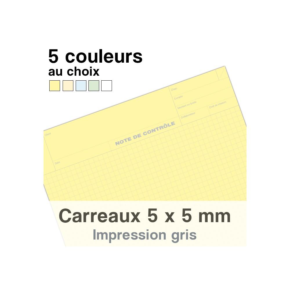 Notes de Contrôle carreaux 5 x 5 mm, bloc comptable de 100 Feuilles