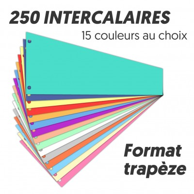 Intercalaires de révision Trapèze Bloc de 250 intercallaires 110 x 235 mm