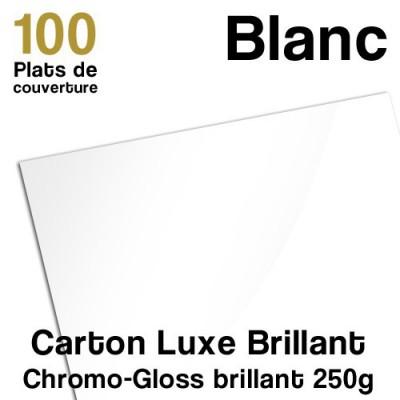 Carton Luxe Brillant - 250g - Paquet de 100 plats de couvertures